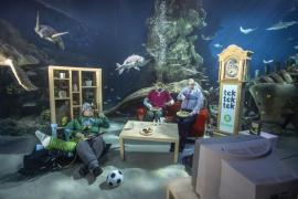 Climate Warming Warning for Oxfam in the London Aquarium